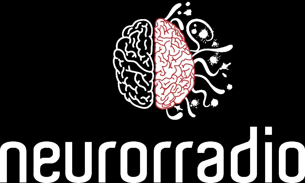 Neuroanatomia como você nunca viu!